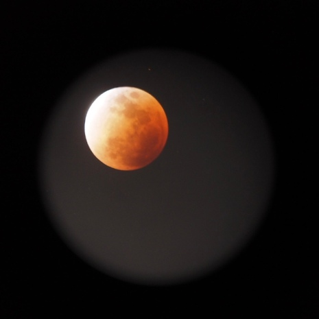 Photo of the Blood Moon taken through the telescope