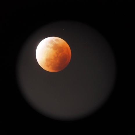 Photo of the Blood Moon taken through the telescope