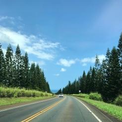Such a pretty drive to the North Shore